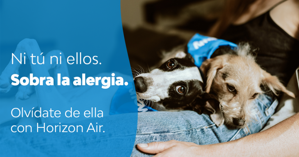 purificadores de aire contra las alergias